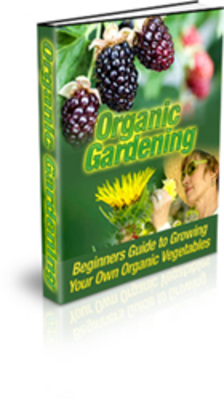 Product picture Organic Vegetable Gardening